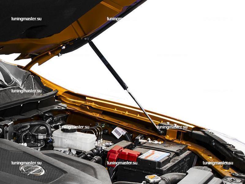 Амортизаторы капота для Nissan Navara