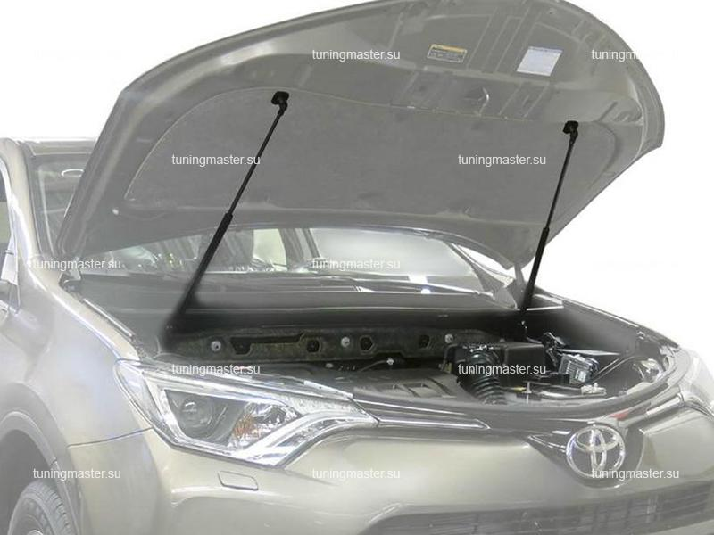 Амортизаторы капота для Toyota RAV4