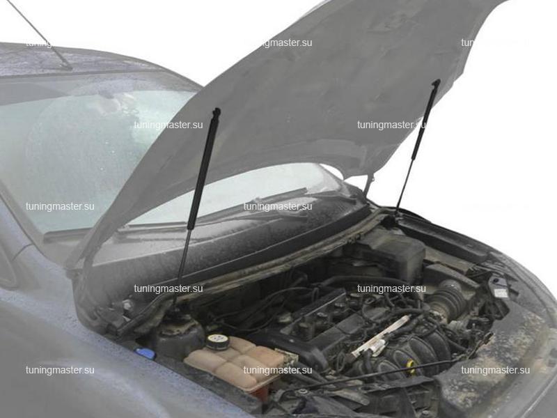Амортизаторы капота для Ford Focus 2