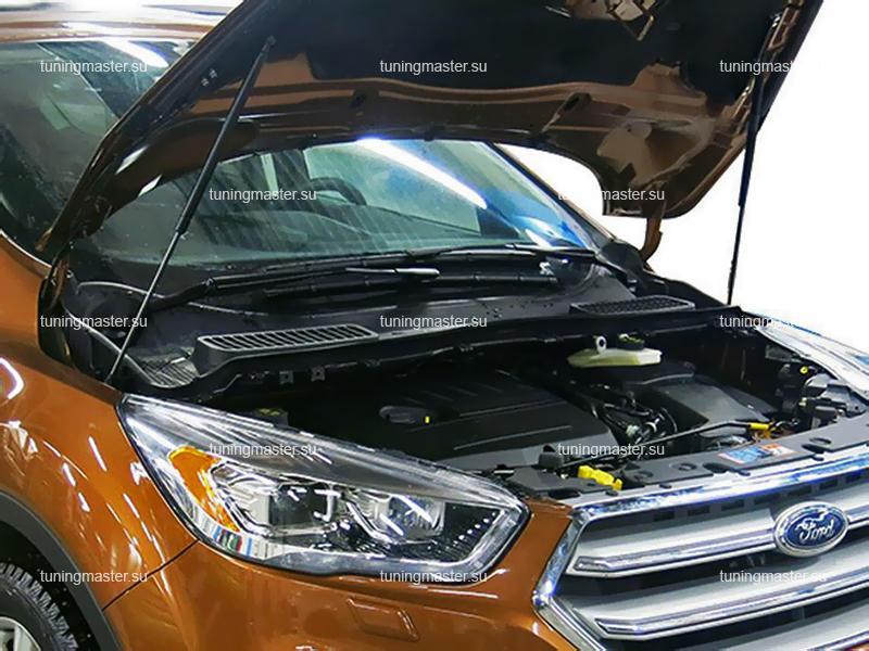 Амортизаторы капота для Ford Kuga