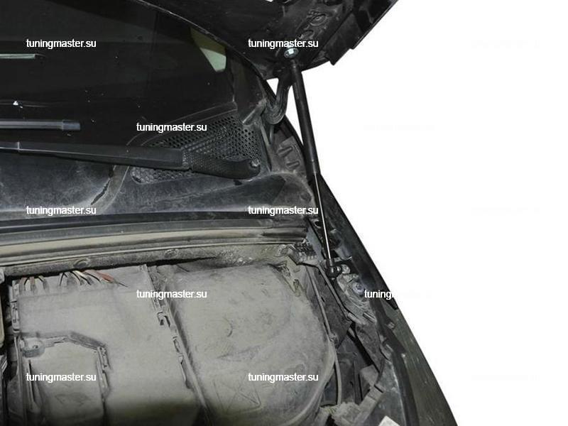 Амортизаторы капота для Citroen C4