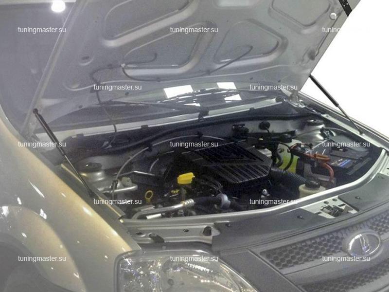Амортизаторы капота для Renault Logan