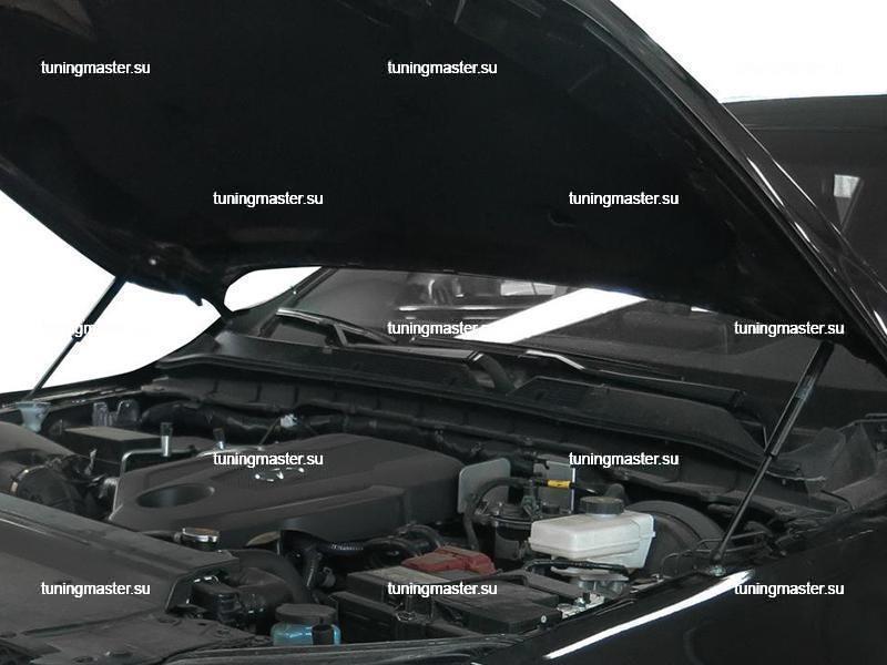 Амортизаторы капота для Mercedes Benz X Class