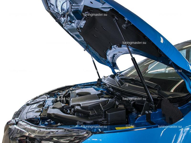 Амортизаторы капота Nissan Qashqai J11
